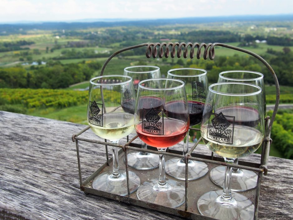 Bluemont Vineyard