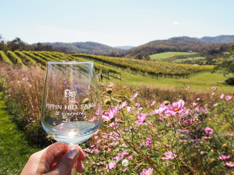 Pippin Hill Farm & Vineyard